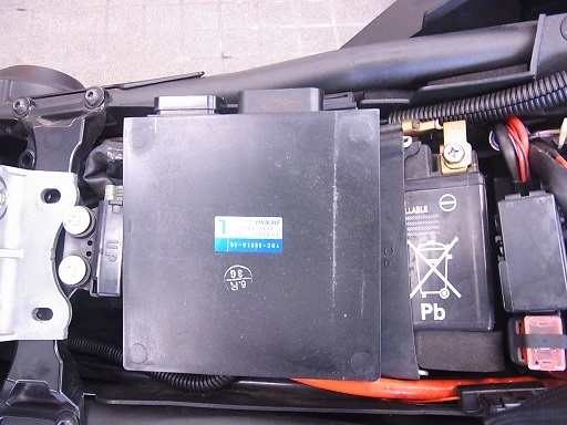 RIMG0650-1.jpg
